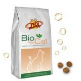 BIO for CAT Croccantini Biologici per Gatti.