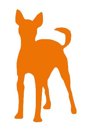 Dieta cane labrador dieta cane taglia medio grande