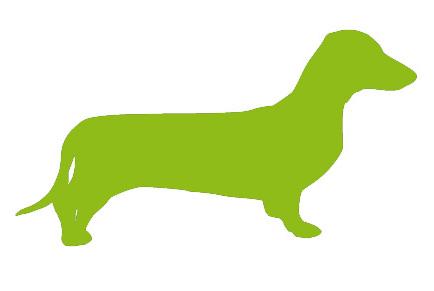 cibo per cani golosi